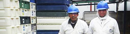 3-trabajadores